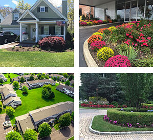 collage of professional landscaping