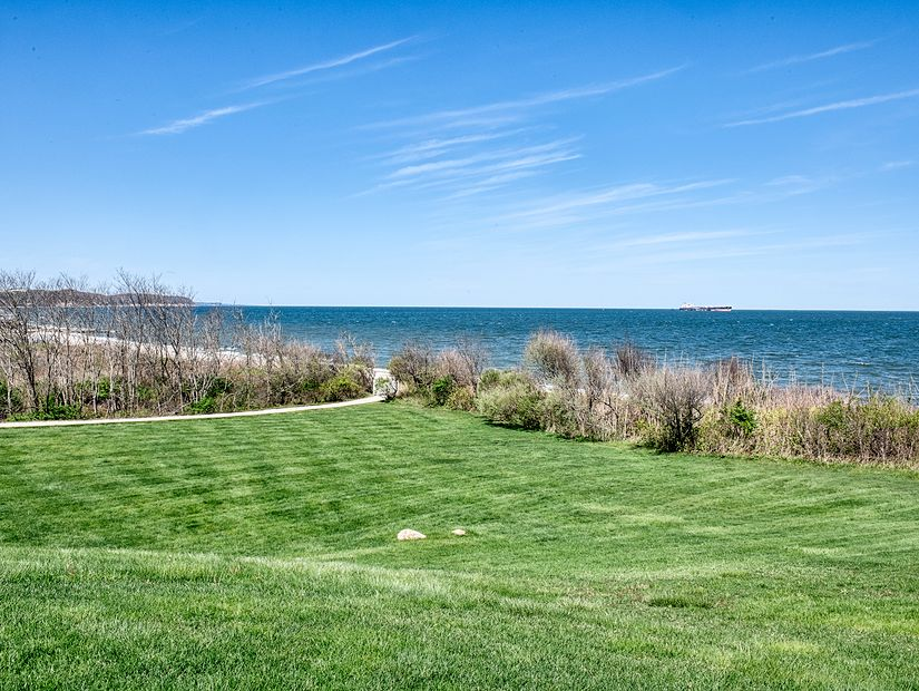 grass at maidstone landing overlooking ocean
