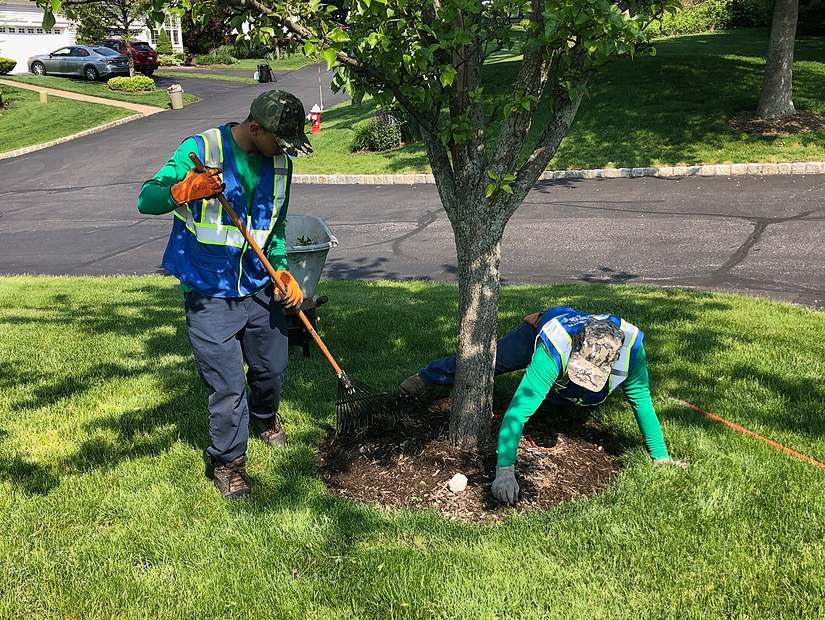 two lawn element employees weeding at maidstone landing