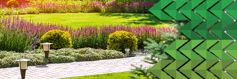 HOW Your Residential Landscaping Can Improve Your Health