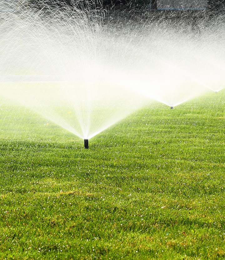 grass being water by sprinkler