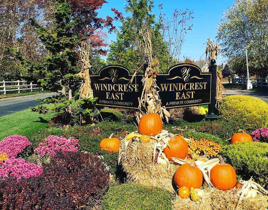 pumpkins seasonal entryway