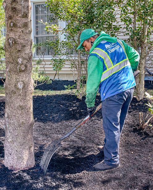 man raking front yard