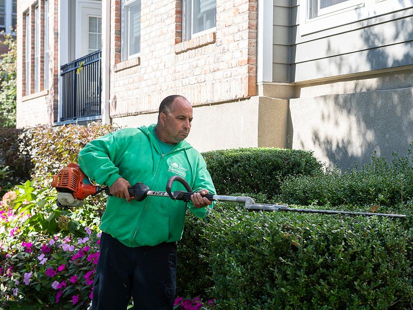 lawn elements team member trimming hedge