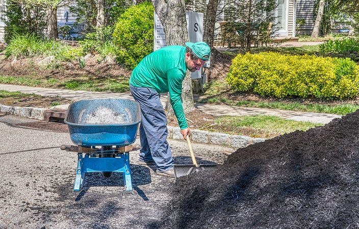 team member digging